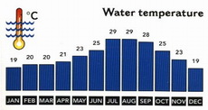 Egypt Weather - Average Monthly Water Temperatures  and Wind Speed in the Red Sea